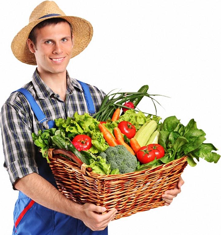 卡尔加里超低价蔬果超市 Freestone Produce 电话:403-248-4466