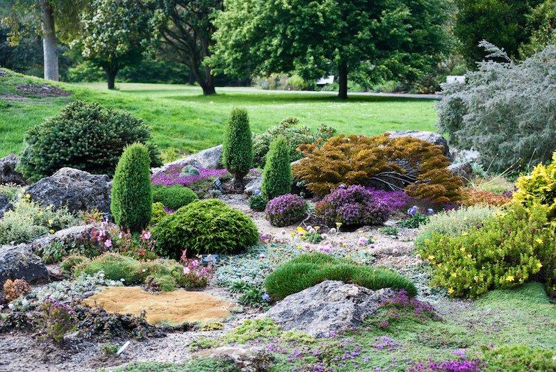 San francisco botanical garden for San francisco botanical gardens
