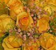 纽约法拉盛花店