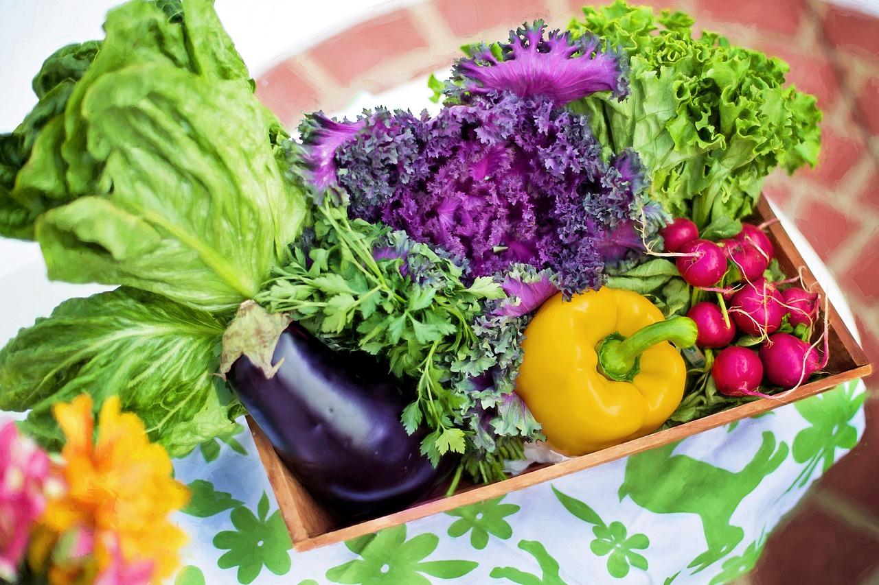 送菜347-446-5697法拉盛新鲜蔬菜/法拉盛送菜/法拉盛网上买菜
