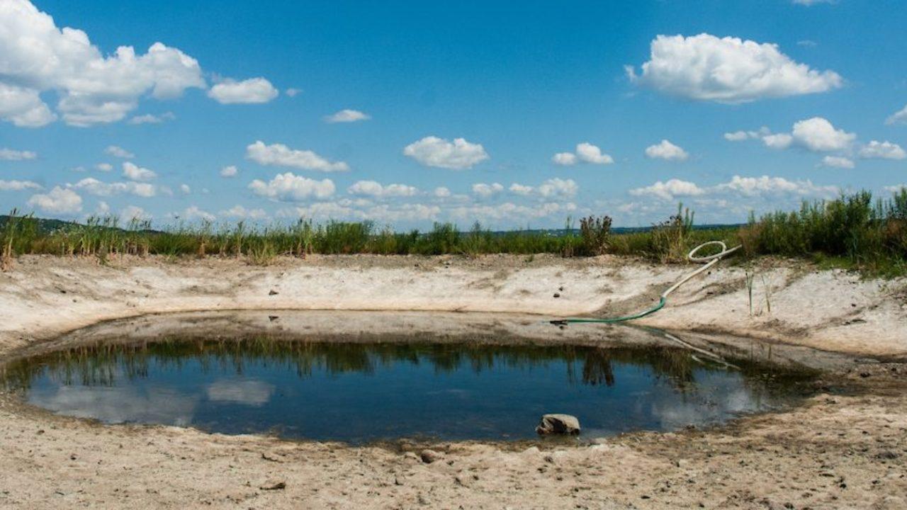 纽约州四地区发布干旱预警提倡纽约居民节约用水