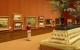 9月18日 纽约市8家博物馆免费开放